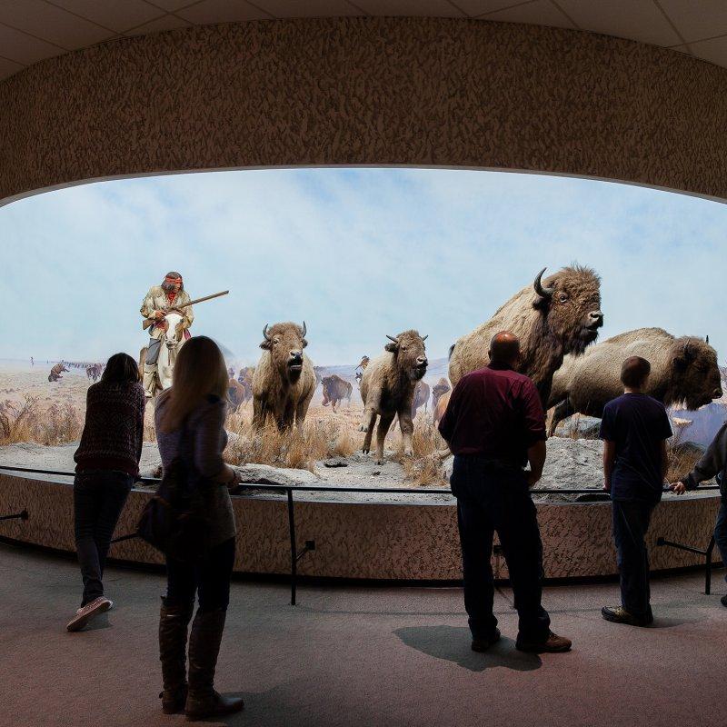 Manitoba Museum Tour